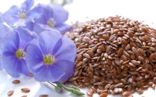 Как принимать семена льна при запорах? Рецепты