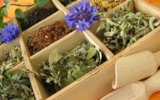 Слабительные растительного происхождения: аптечные и народные
