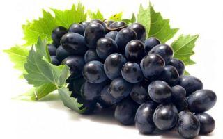 Кушать виноград при запоре полезно или вредно?