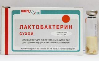 Как принимать лактобактерин?